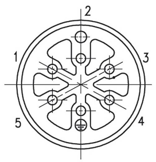 Készülékdugó, C16-3 Pólusszám: 5 + PE egyenes 21 A