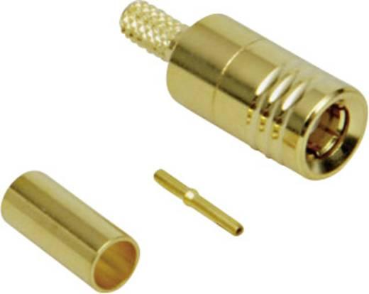 SMB krimpelhető dugó, RG 174-hez, aranyozott