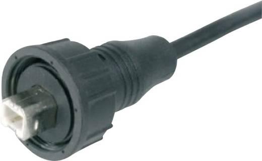 USB dugaszolható összekötő 2.0 IP67 dugó, egyenes A-KAB-USBB-MS-1M USB B dugó 1 méter vezetékkel Assmann WSW