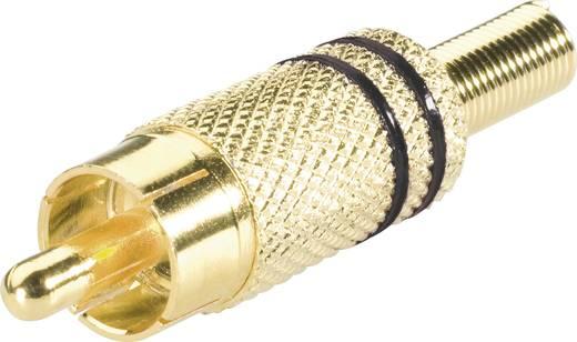 BKL Electronic lengő RCA dugó, aranyozott, fekete, 101002