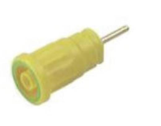 Biztonsági hüvely 4mm sárga/zöld
