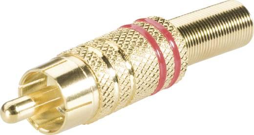 BKL Electronic lengő RCA dugó, aranyozott, piros, 101007