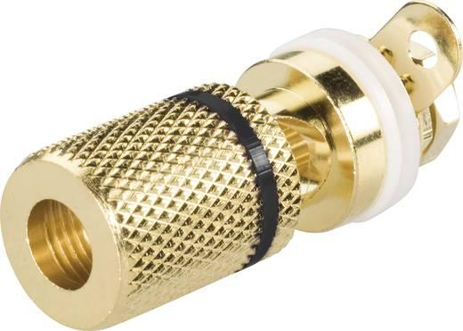4mm-es beépíthető hüvely, aranyozott Szigetelt, színmegjelöléssel Fekete BKL Electronic