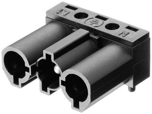 Hálózati csatlakozó dugó, hajlított, pólusszám: 3, 16 A, fehér Adels-Contact AC 166 GSTLH/ 3