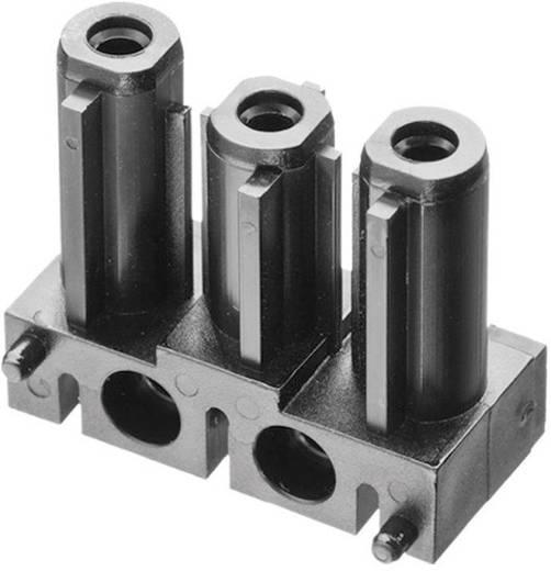 Hálózati csatlakozó alj, egyenes, pólusszám: 3, 16 A, fekete, Adels-Contact AC 166 GBULV/ 3