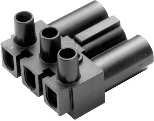 Hálózati csatlakozó dugó, hajlított, pólusszám: 3, 16 A, fehér Adels-Contact AC 166 GST/ 3