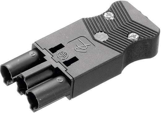 Hálózati csatlakozó dugó, egyenes, pólusszám: 3, 16 A, fekete, Adels-Contact AC 166 GSTPF/ 3