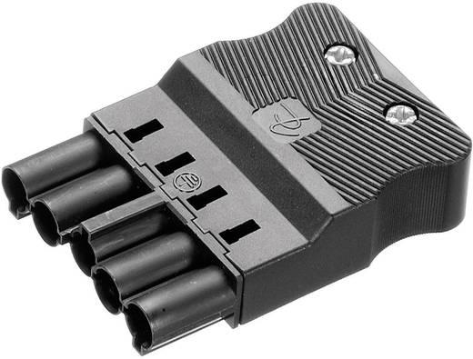 Hálózati csatlakozó dugó, egyenes, pólusszám: 5, 16 A, fekete, Adels-Contact AC 166 GSTF/ 525