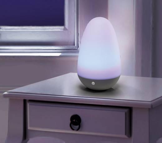 Hangulatlámpa, dekorációs lámpa, Egg shape, 0,7 W Renkforce OVORG-02 LED RGB