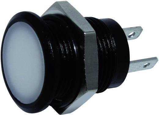 LED-es jelzőlámpa Fehér 24 V/DC Signal Construct SKED12614
