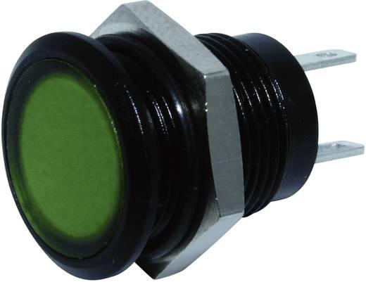 LED-es jelzőlámpa Zöld 24 V/DC Signal Construct SKED12714