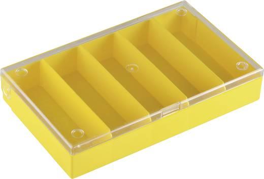 5 részes alkatrésztároló doboz, átlátszó/színes, 164 x 101 x 31 mm