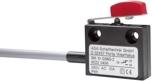 Mikrokapcsoló 250 V/AC 10 A 1 x BE/(KI) ASA Schalttechnik SM 10 G38G Z IP65 nyomó 1 db