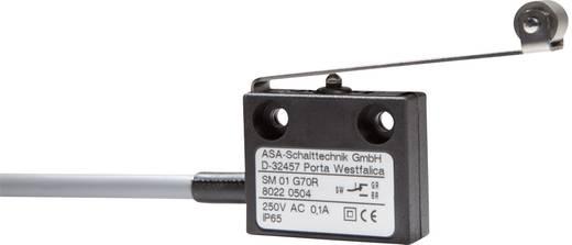 Mikrokapcsoló 250 V/AC 0,1 A 1 x BE/(BE) ASA Schalttechnik SM 01 G70R IP65 nyomó 1 db