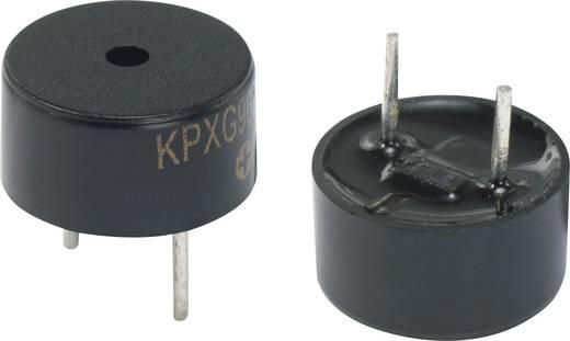 Mágneses zümmer, KPXG sorozat Hangerő: 75 dB 2 V Tartalom: 1 db
