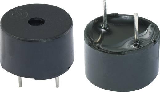 Mágneses jeladó elektronika nélkül, KPMG sorozat Hangerő: 80 dB 3 V Tartalom: 1 db
