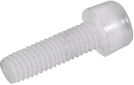 Toolcraft belső kulcsnyílású csavar M4 x 25 mm, 10 db, műanyag, DIN 912 830298