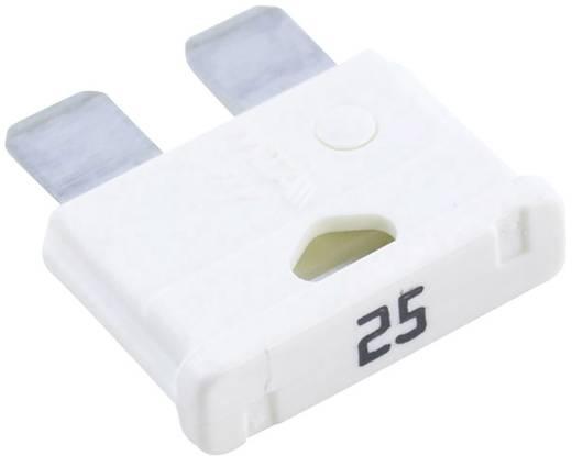 Standard lapos biztosíték 25 A
