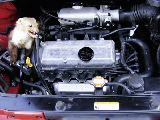 Autós nyestriasztó és menyétriasztó nagyfeszültségű lapokkal, 12V, KEMO M186