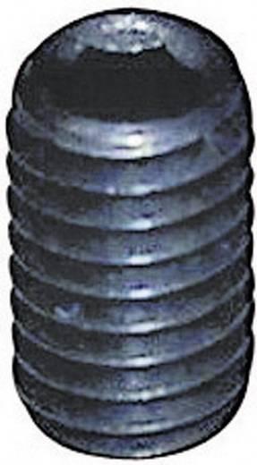 Toolcraft belső kulcsnyílású hernyócsavar, M3 x 6 mm, DIN 913, fekete, 20 db 886281