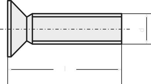 Toolcraft süllyesztett fejű, torx csavar, nemesacél, M3 x 6 mm, DIN 965, V2A