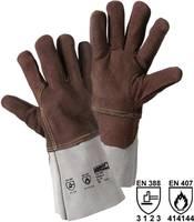 Hasított bőr Hővédő kesztyű Méret (kesztyű): Univerzális méret EN 388 , EN 407 Cat III L+D worky SABATO 1807 1 pár L+D worky