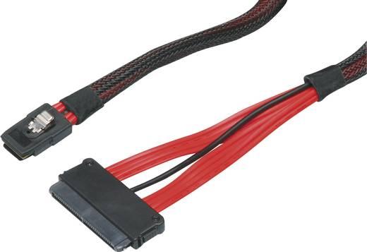 Mini SAS/SAS csatlakozókábel Mini SAS-Stecker SFF-8087 - SAS-Stecker SFF-8484 0,5 m piros