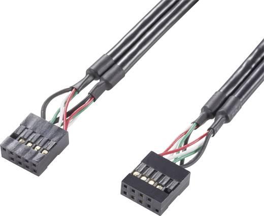 Belső USB Pin Header kábel, 10 pólusú, Renkforce 0,5 m