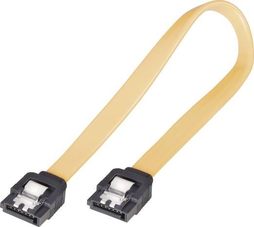SATA merevlemez csatlakozókábel [1x SATA alj, 7 pólus - 1x SATA alj, 7 pólus] 0,2 m, sárga, renkforce