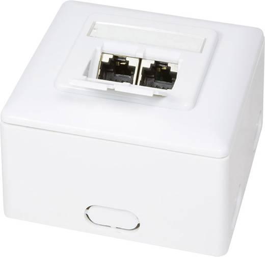 Fali hálózati csatlakozó doboz, CAT6 Ral 9003, LogiLink NP0039