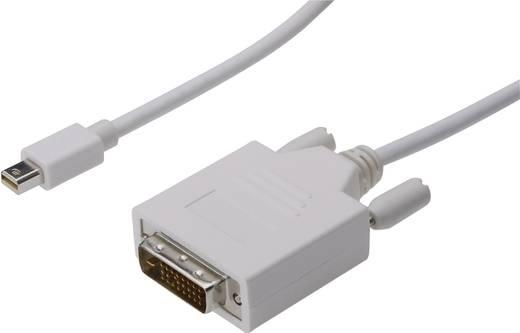 DisplayPort / DVI csatlakozókábel [1x mini DisplayPort dugó - 1x DVI dugó 24+1 pól.] 2 m fehér