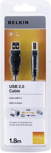 USB kábel, A/B, 1,8 m, fekete, Belkin Pro