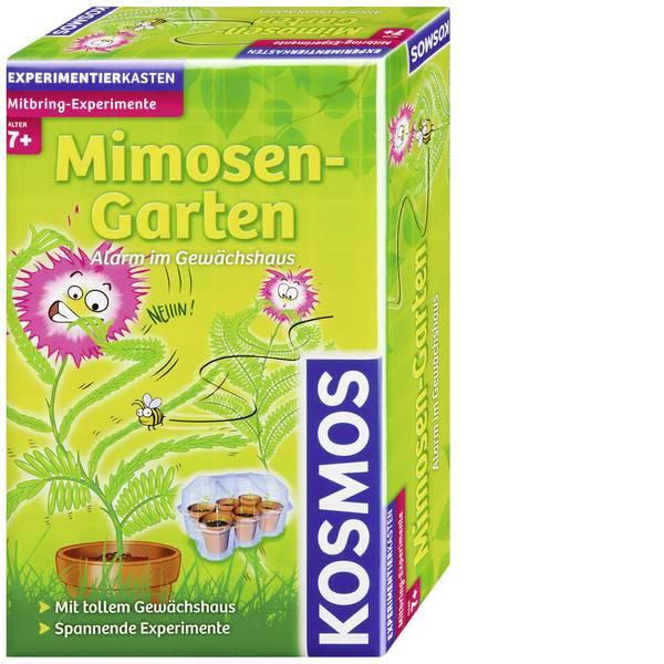 Kit di apprendimento natura - PRODOTTO IN LINGUA TEDESCA Esperimenti portatili Giardino delle mimose Kosmos 657031 Classe di età da 7 anni -