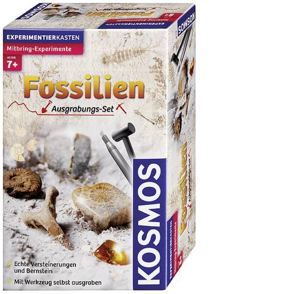 Kit esperimenti e pacchetti di apprendimento - Kosmos 630461 Ausgrabungsset Fossilien Kit esperimenti da 7 anni -