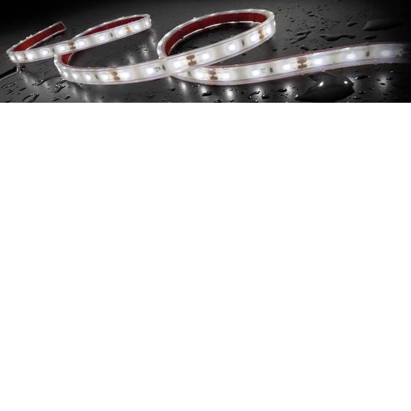 Illuminazione per interni auto - Staudte-Hirsch 570029 SH-5.610 12 V Striscia LED, Striscia LED, Luce LED da interni 12 V LED (L x L x A) 1 m x 12 mm x 5  -