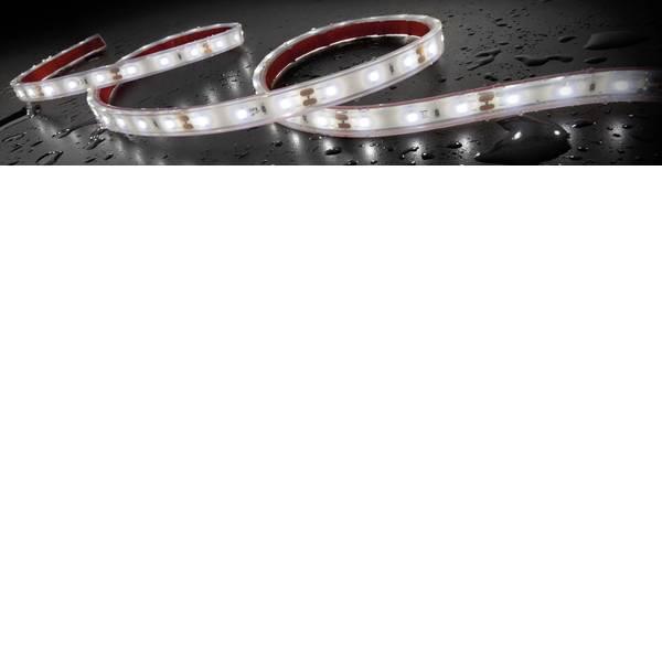 Illuminazione per interni auto - Staudte-Hirsch 570030 SH-5.612 12 V Striscia LED, Striscia LED, Luce LED da interni 12 V LED (L x L x A) 2 m x 12 mm x 5  -