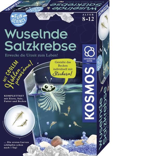 Kit esperimenti e pacchetti di apprendimento - Kit esperimenti Kosmos FunScience Wuselnde Salzkrebse 654160 da 8 anni -