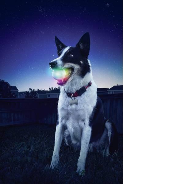 Prodotti per animali domestici - Palla di lancio a LED NITE Ize GlowStreak Trasparente 1 pz. -