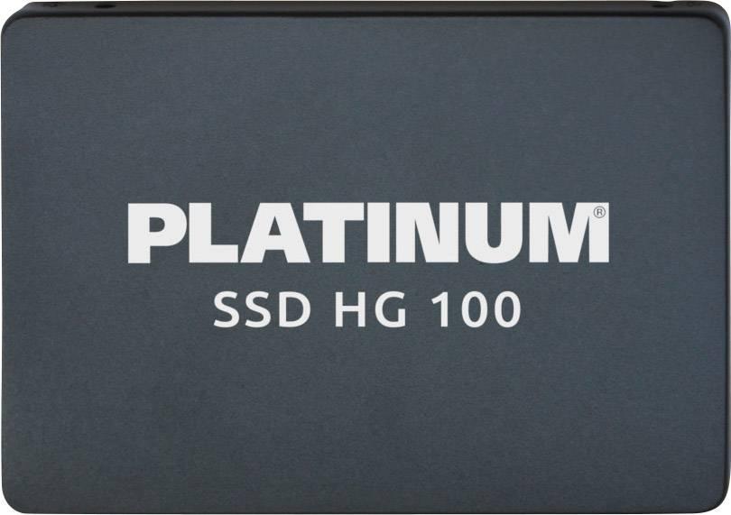Platinum HG100 Memoria SSD int