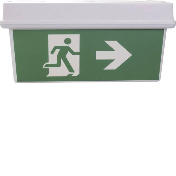Segnaletica per uscite d`emergenza - Sensorit 0306 Indicazione via di fuga illuminata Montaggio a soffitto -