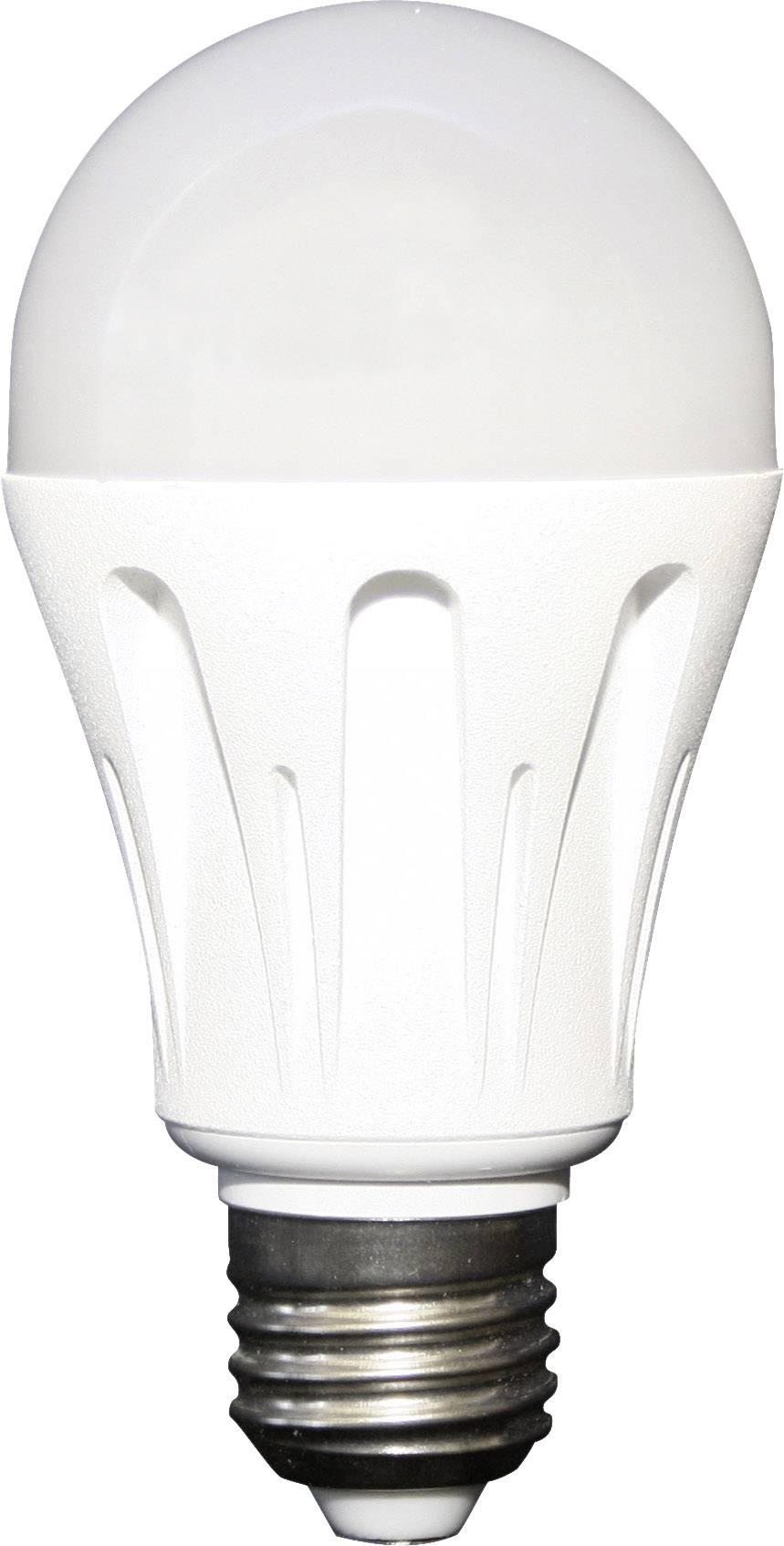 Lampada LED Steca LED 6 750956