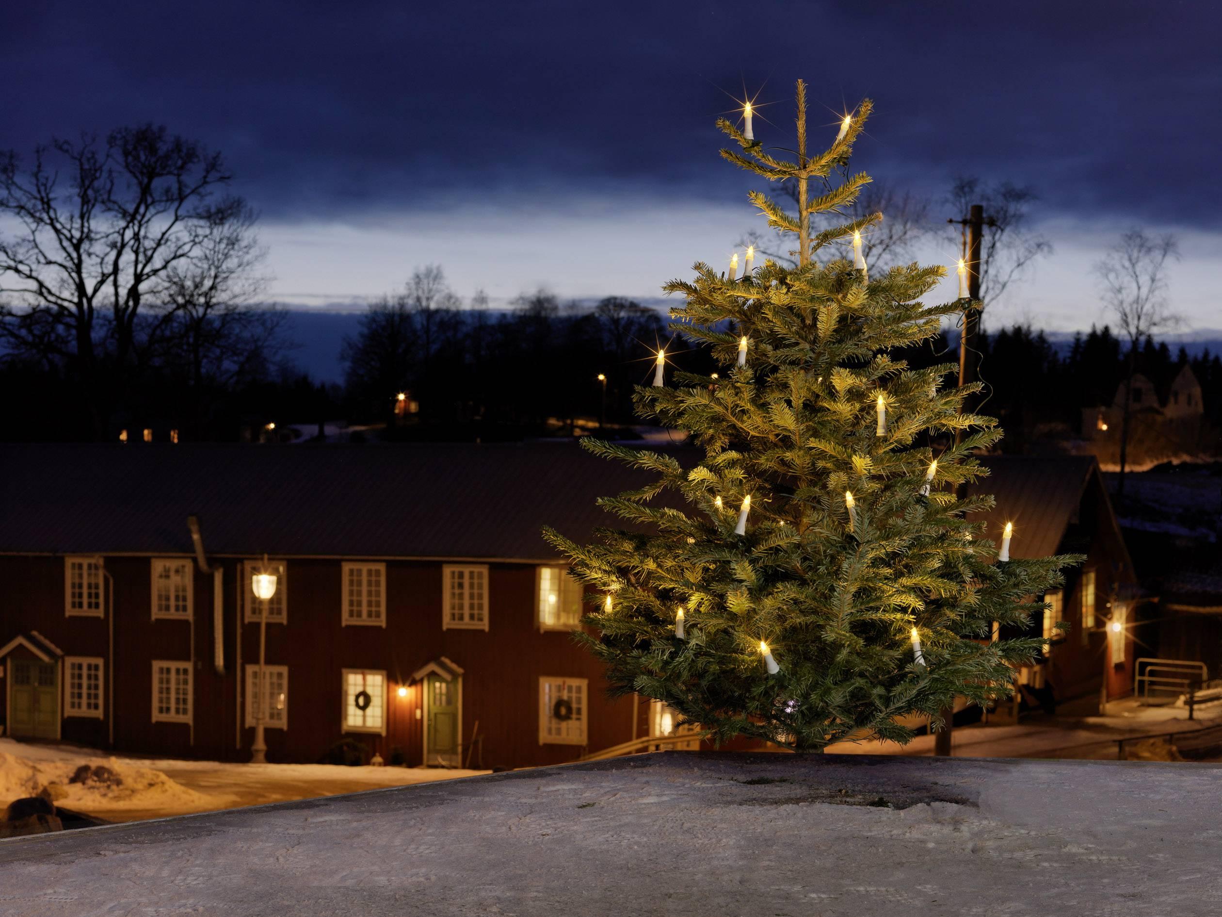 Konstsmide illuminazione per albero di natale esterno