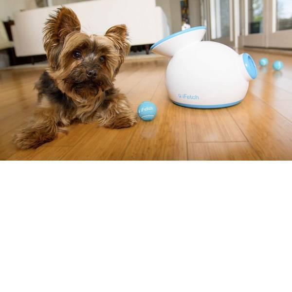 Prodotti per animali domestici - Lancia palle iFetch Original Bianco-Blu 1 pz. -