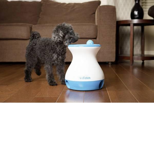 Prodotti per animali domestici - Lancia palle iFetch Frenzy Bianco-Blu 1 pz. -
