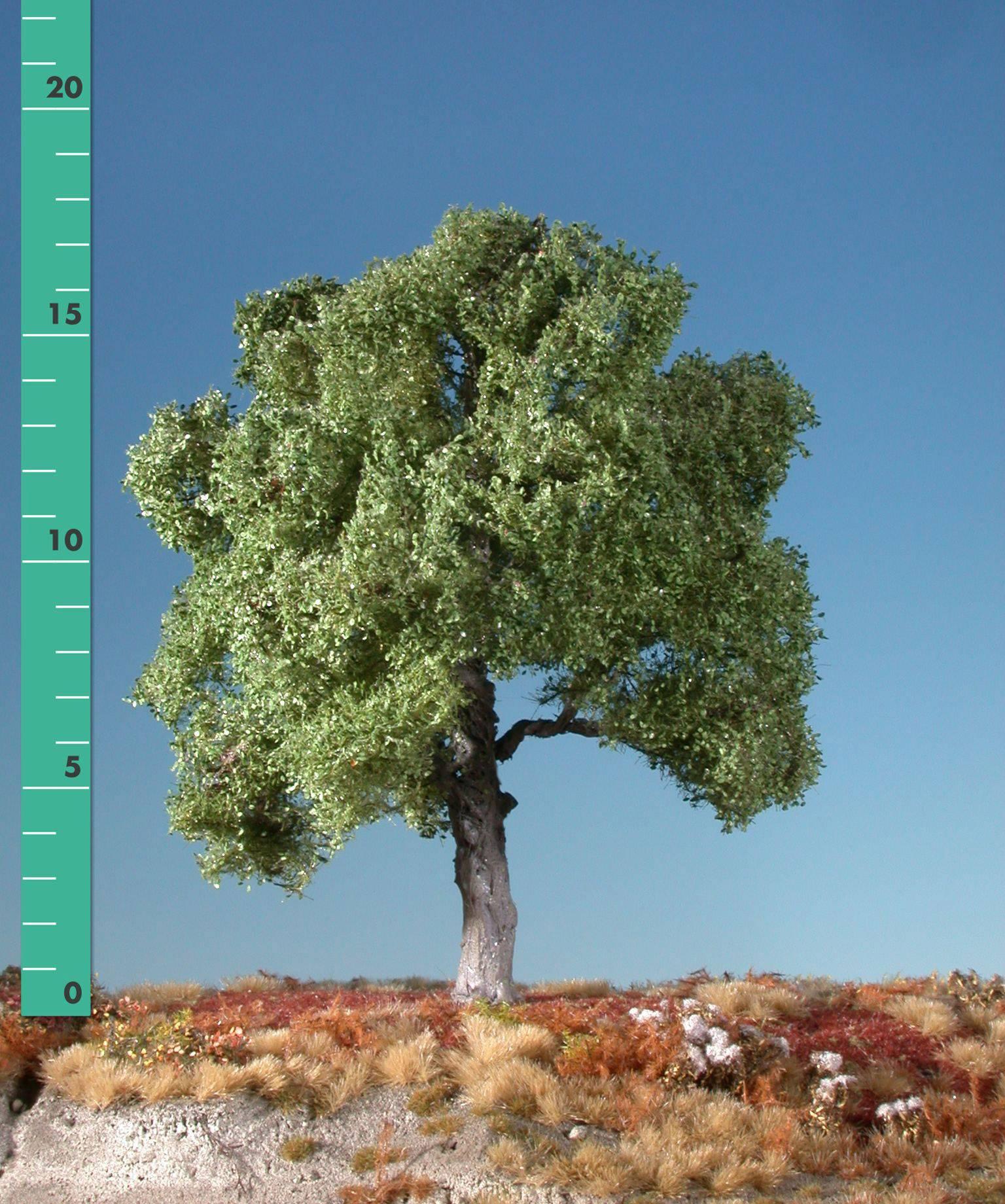 Albero faggio Mininatur 220-12 1 pz.