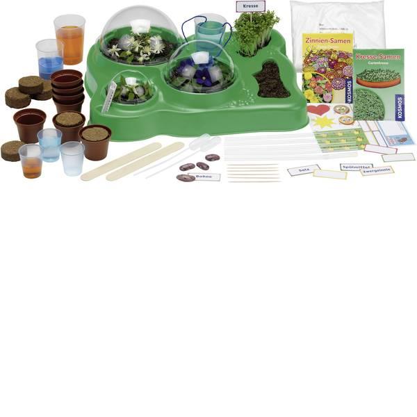 Kit di apprendimento natura - Kit esperimenti Kosmos Mein erstes Gewächshaus 634919 da 5 anni -
