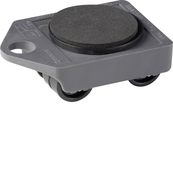 Carrelli e pianali di trasporto - Piattaforma con ruote Plastica Capacità di carico (max.): 150 kg Meister Werkzeuge 0820010 -