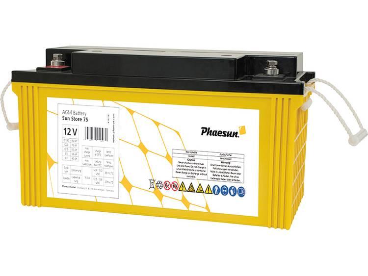 Phaesun Sun-Store 80 340141 Solar-accu 12 V 82 Ah Loodvlies (AGM) (b x h x d) 348 x 178 x 167 mm M6-schroefaansluiting