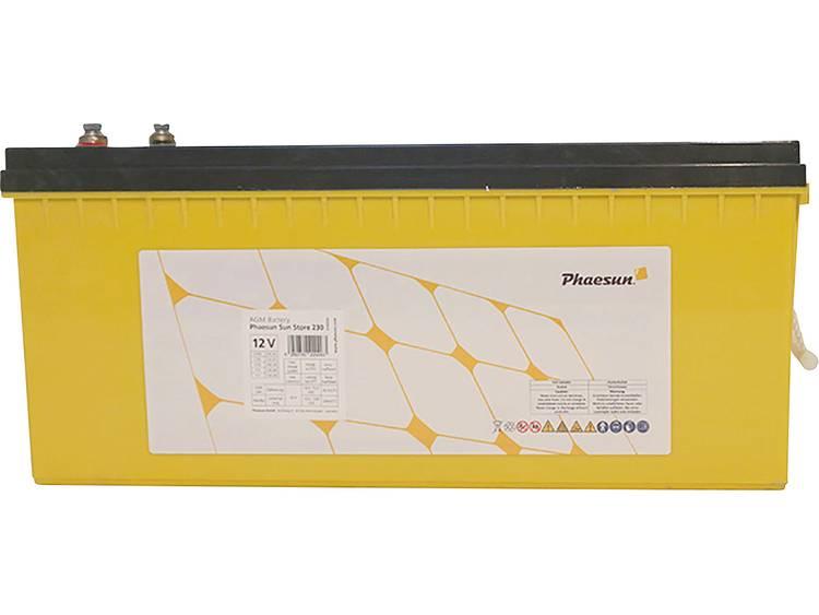 Phaesun Sun-Store 250 340090 Solar-accu 12 V 254 Ah Loodvlies (AGM) (b x h x d) 522 x 240 x 224 mm M8-schroefaansluiting