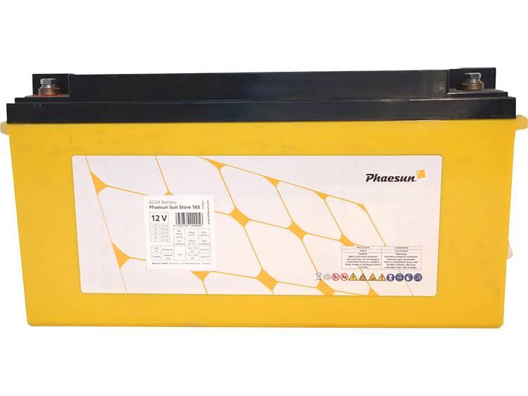 Phaesun Sun-Store 175 340091 Solar-accu 12 V 177 Ah Loodvlies (AGM) (b x h x d) 483 x 239 x 170 mm M8-schroefaansluiting